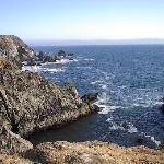 Bodega Head - Sept. 06