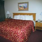 Homewood Suites by Hilton Albuquerque Photo