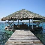 The palapa at Barefoot Cay were we swam each day