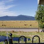 Foto de Crater Lake Bed and Breakfast