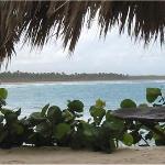 Local Beach-1