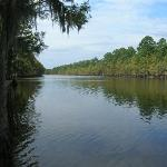 Caddo Lake Park