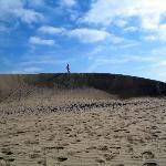 Au Naturel in the dunes