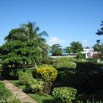 Foto de Coral Seas Garden