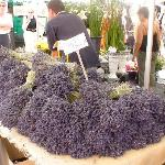 Lavender stall
