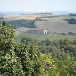 Our hike along the white road to Pienza.