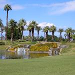 Marriot Desert Springs (Palm Course)