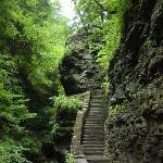 Watkin Glenn Gorge Trail