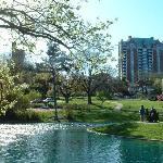 Eden Park Photo