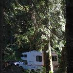 Campsite at Dungeness Forks Campground