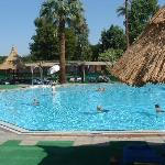 Adults-only pool - with plenty of sunbeds