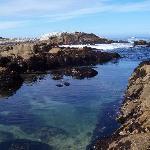 Pacific Grove Shoreline