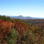Chattahoochee National Forest Foto