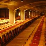 Barrels of wine in the cellar