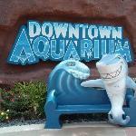 Dowtown Aquarium