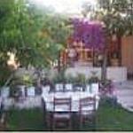 garden from Akay Hotel