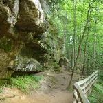 Part of trail to Munising Falls