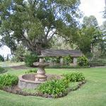 MauiWine Photo