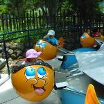 Bulgy the Goldfish