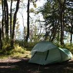 my backpacking tent in the campground