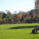 Darden grounds