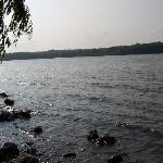 Illiniwek Forest Preserve Photo