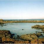 Ahihi-Kinau Natural Area Reserve