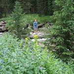 Enjoying fresh mountain streams