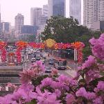 Colorful flowers line streets of Chinatown
