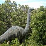 George S. Eccles Dinosaur Park Photo