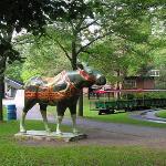 Centreville Amusement Park Photo