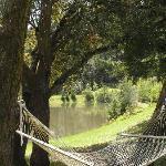 one inviting hammock
