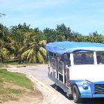 Resort Shuttle