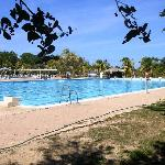 Olympic Swimming Pool 50M