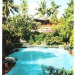 Pool at Swastika Bungalows, Sanur, Bali