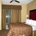 adjustable ceiling fan over bed