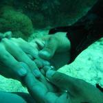 Under water Engagement!