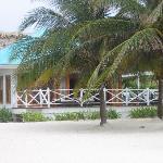 plantation suite