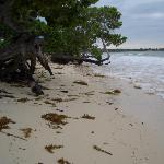 Beach after storm