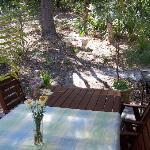 Patio table with surrounding trees