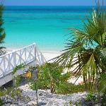 Sammy T's Beach Resort-bild