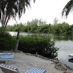 Heron Lagoon
