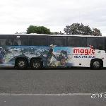 Traveling the Magic Bus is truely MAGIC