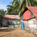 Beach shacks along access dirt path