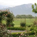 Gardens and view of mountains