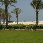 Garden towards beach 2004