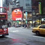 Times Sq. and Loop Bus