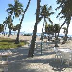 The Beach at Breezy Palms