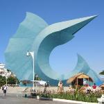 city tour- downtown - sailfish