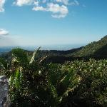 View from top of El Yunque